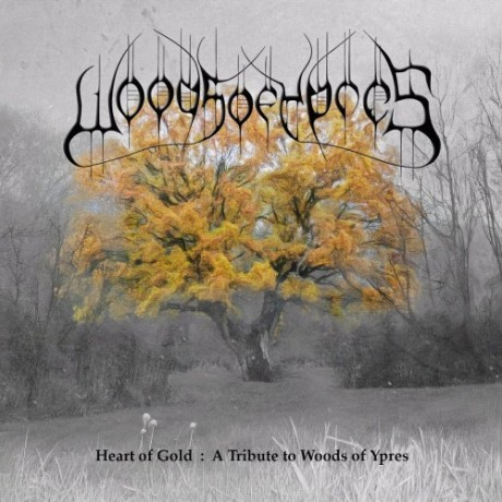 Heart-of-Gold-A-Tribute-to-Woods-of-Ypres-e1343246205256